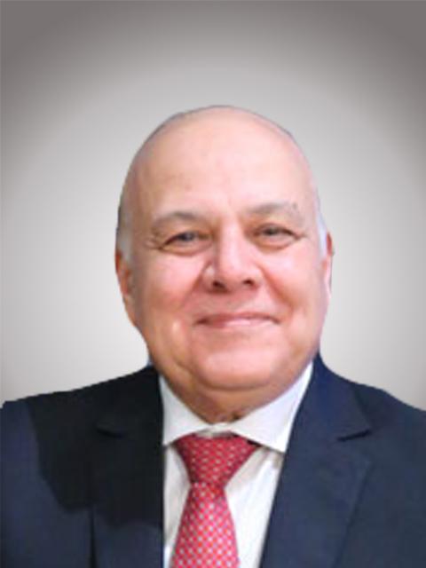Prf. Dr. Amr Salama